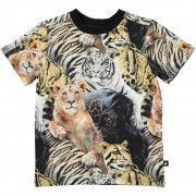 Rey Wild Cats tričko | MOLO