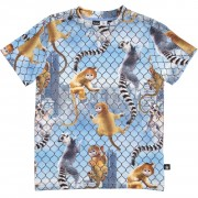 Rey Climbing Monkeys tričko | MOLO