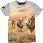Raven Running Lions tričko | MOLO