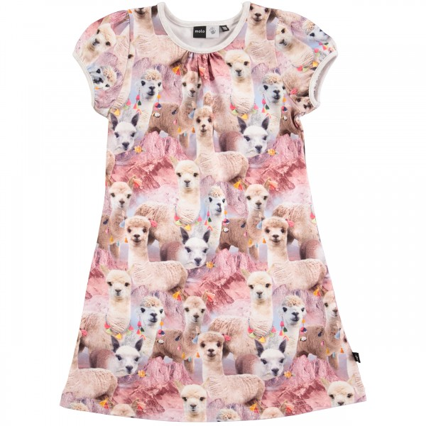 Camellia Lovely Lhama šaty | MOLO