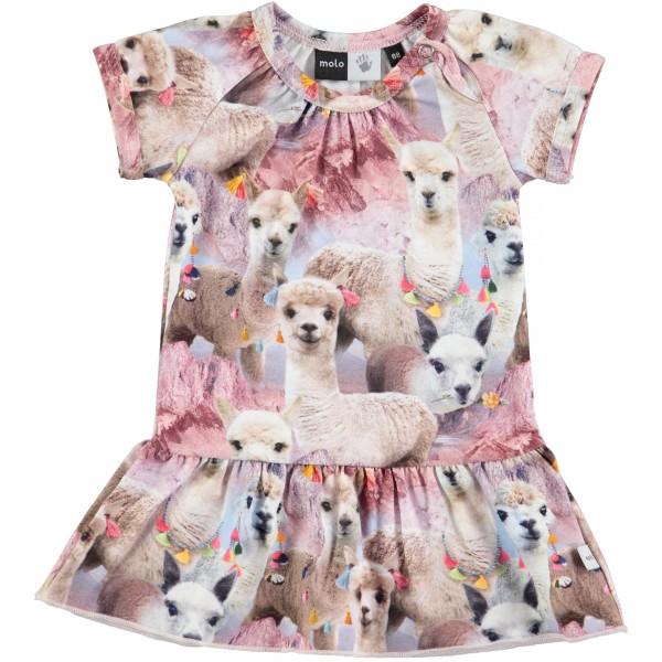 Cibbe Lovely Lama šaty | MOLO